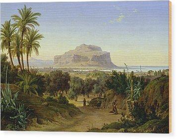 View Of Palermo With Mount Pellegrino Wood Print by August Wilhelm Julius Ahlborn