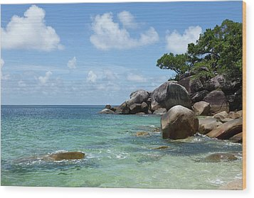 View Of The Sea And A Rocky Coastline Wood Print by Caspar Benson