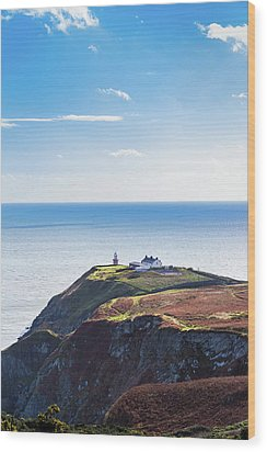 View Of The Trails On Howth Cliffs With The Lighthouse In Irelan Wood Print by Semmick Photo