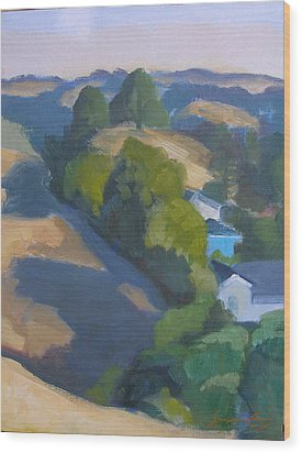 View Of Walnut Creek Hills From Trailhead Wood Print