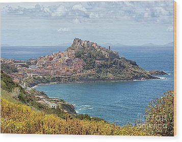 View On Castelsardo Wood Print by Patricia Hofmeester