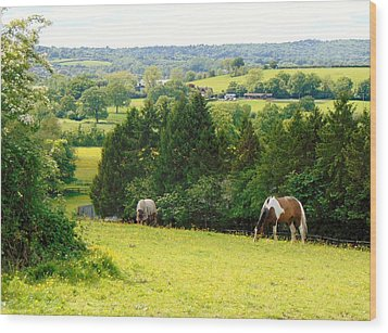 View To Kill For Wood Print by Linda Corby