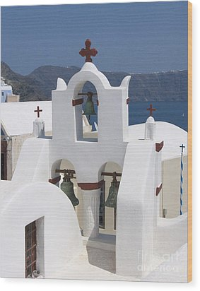 View To The Sea Wood Print by Sandra Bronstein
