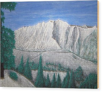 Viewfrom Spruces Wood Print by Michael Cuozzo