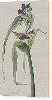 Vigor's Warbler Wood Print by John James Audubon