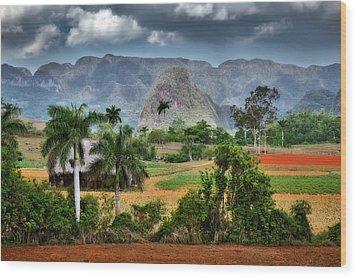 Vinales. Pinar Del Rio. Cuba Wood Print by Juan Carlos Ferro Duque