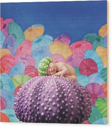 Vince As A Sea Urchin Wood Print by Anne Geddes