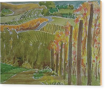 Vineyard And Cultivated Fields Wood Print by Janet Butler