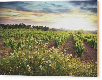 Vineyard Wood Print