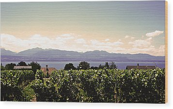 Vineyard On Lake Geneva Wood Print by Jeff Barrett