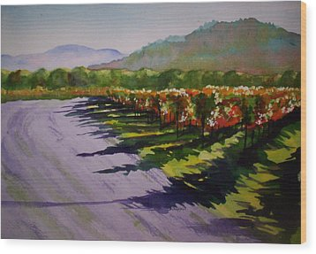 Vineyard Shadows Wood Print by Becky Chappell