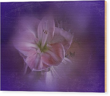 Wood Print featuring the photograph Vintage Amaryllis No. 3 by Richard Cummings