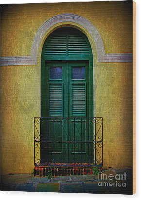 Vintage Arched Door Wood Print by Perry Webster
