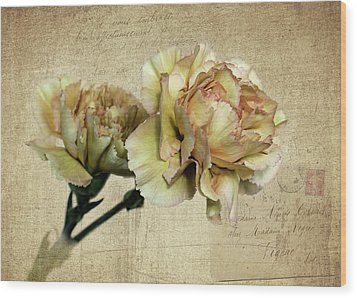 Vintage Carnations Wood Print by Judy Vincent