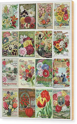 Vintage Flower Seed Packets 1 Wood Print