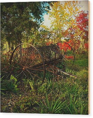 Vintage Hay Rake Wood Print by Chris Berry