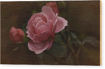 Wood Print featuring the photograph Vintage October Pink Rose by Richard Cummings