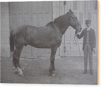 Wood Print featuring the photograph Vintage Photograph 1902 Horse With Handler New Bern Nc Area by Unknown
