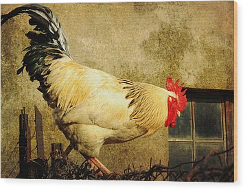 Vintage Rooster Wood Print by Gary Smith