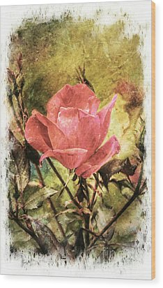 Vintage Rose Wood Print by Tina  LeCour