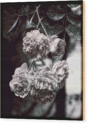 Wood Print featuring the photograph Vintage Roses by Louise Kumpf