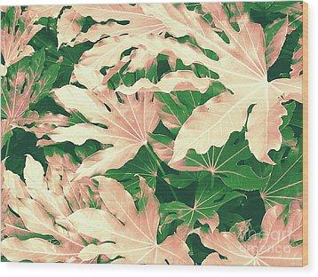 Vintage Season Pink Wood Print by Rebecca Harman