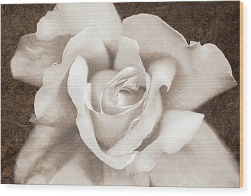 Wood Print featuring the photograph Vintage Sepia Rose Flower by Jennie Marie Schell