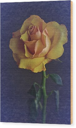 Wood Print featuring the photograph Vintage Single Rose by Richard Cummings