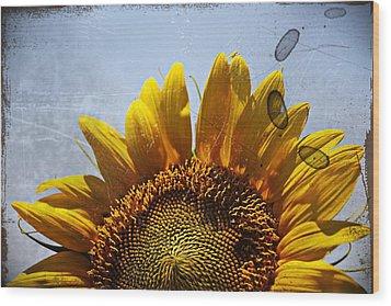 Vintage Sunflower- Fine Art Wood Print by KayeCee Spain
