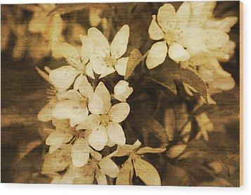 Vintage Wood Print by Terrie Taylor