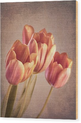 Vintage Tulips Wood Print by Wim Lanclus