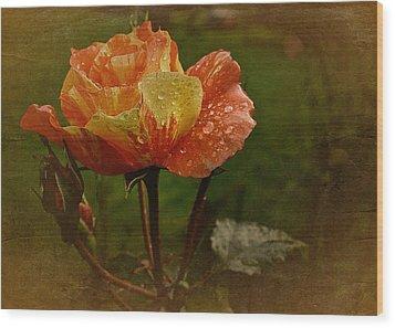 Vintage Sunset Rose Wood Print