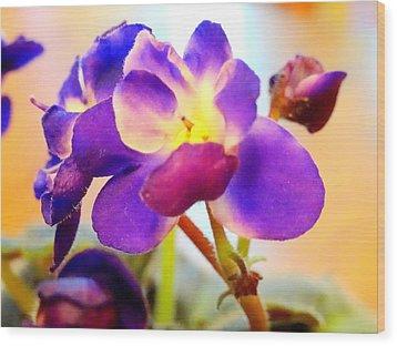 Violet In Bloom Wood Print