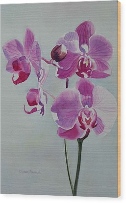 Violet Orchid Wood Print by Sharon Freeman