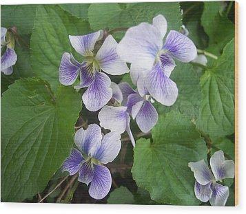 Violets 2 Wood Print by Anna Villarreal Garbis
