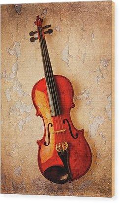 Violin Dreams Wood Print by Garry Gay