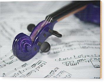 Violin Tuning Pegs  Wood Print