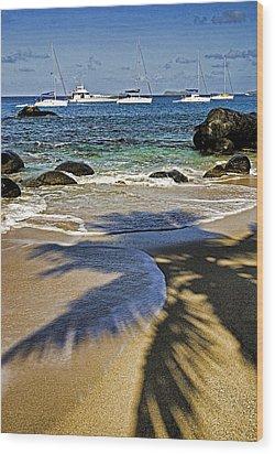 Virgin Gorda Beach Wood Print by Dennis Cox WorldViews