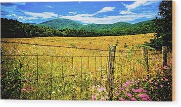 Virginia Fields Of Green Wood Print by David Hahn