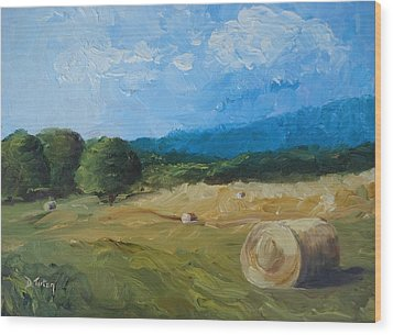Virginia Hay Bales II Wood Print by Donna Tuten