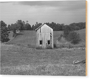Virginia Shed Wood Print by Michael L Kimble