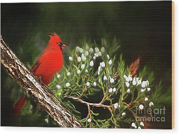 Wood Print featuring the photograph Virginia State Bird by Darren Fisher