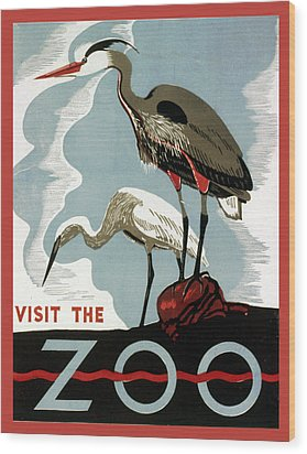 Visit The Zoo Egrets  Wood Print by Unknow