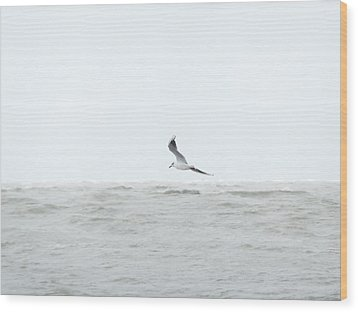 Wood Print featuring the photograph Vol Sur Mer Agitee by Marc Philippe Joly