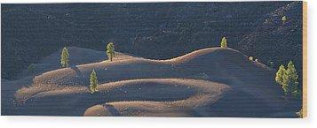 Volcanic Wood Print by Dustin LeFevre