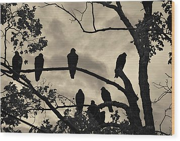 Vultures And Cloudy Sky Wood Print by David Gordon