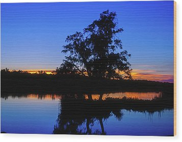 Wagardu Lake, Yanchep National Park Wood Print by Dave Catley