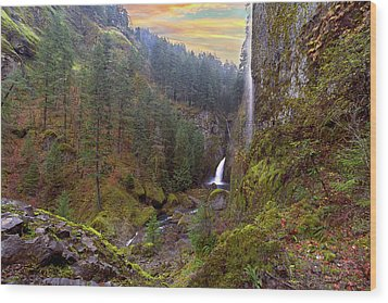 Wahclella Falls In Columbia River Gorge Wood Print by David Gn