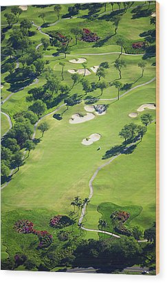 Wailea Gold And Emerald Courses Wood Print by Ron Dahlquist - Printscapes