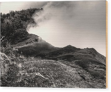 Waimea Early Morning Fog Wood Print by Natasha Bishop